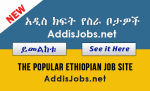 Technical Manager , sales and promotion officer, Accountant, Driver, Programmer