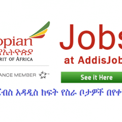 CUSTOMER SERVICE TRAINEE Job at Ethiopian Airlines