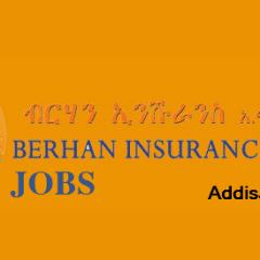 Branch Managers Job at Berhan Insurance S.C