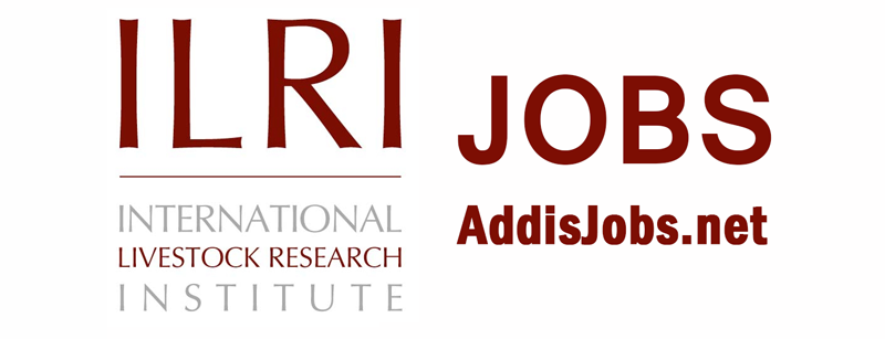 Driver/Logistic Assistant Job at ILRI Ethiopia | Vacancies